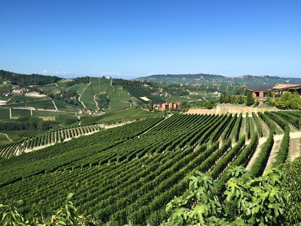 Barolo Italy Wine